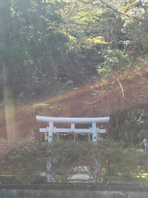 Fujigasaki_2